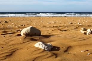 The Beach copy